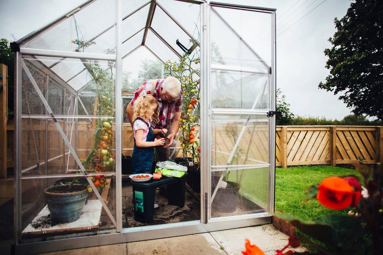 Les meilleures serres de jardin comparatif guide d - Comment choisir une serre de jardin ...